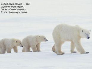 Белый лёд и мишка — бел, Шубку тёплую надел. Он из кубиков ледовых Строит баш