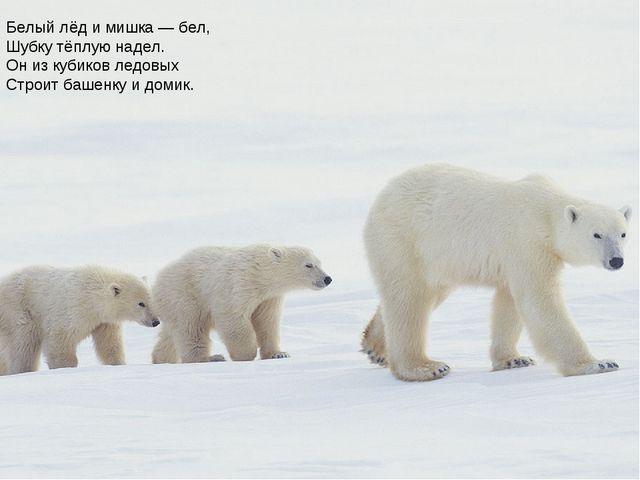 Белый лёд и мишка — бел, Шубку тёплую надел. Он из кубиков ледовых Строит баш...