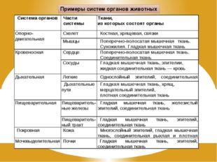 Примеры систем органов животных