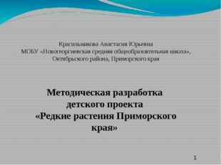 Красильникова Анастасия Юрьевна МОБУ «Новогеоргиевская средняя общеобразовте