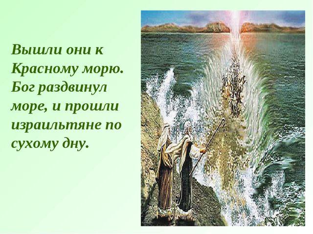 Вышли они к Красному морю. Бог раздвинул море, и прошли израильтяне по сухому...