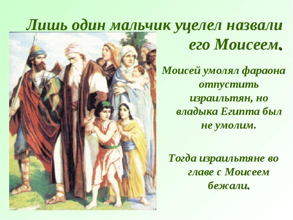 Лишь один мальчик уцелел назвали его Моисеем. Моисей умолял фараона отпустить...