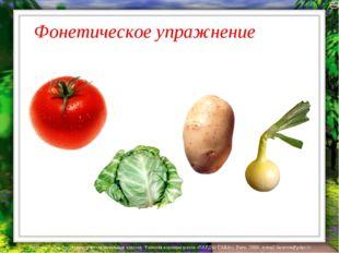 Фонетическое упражнение Лазарева Лидия Андреевна, учитель начальных классов,