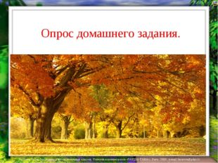 Опрос домашнего задания. Фруктовые стихи Лазарева Лидия Андреевна, учитель н