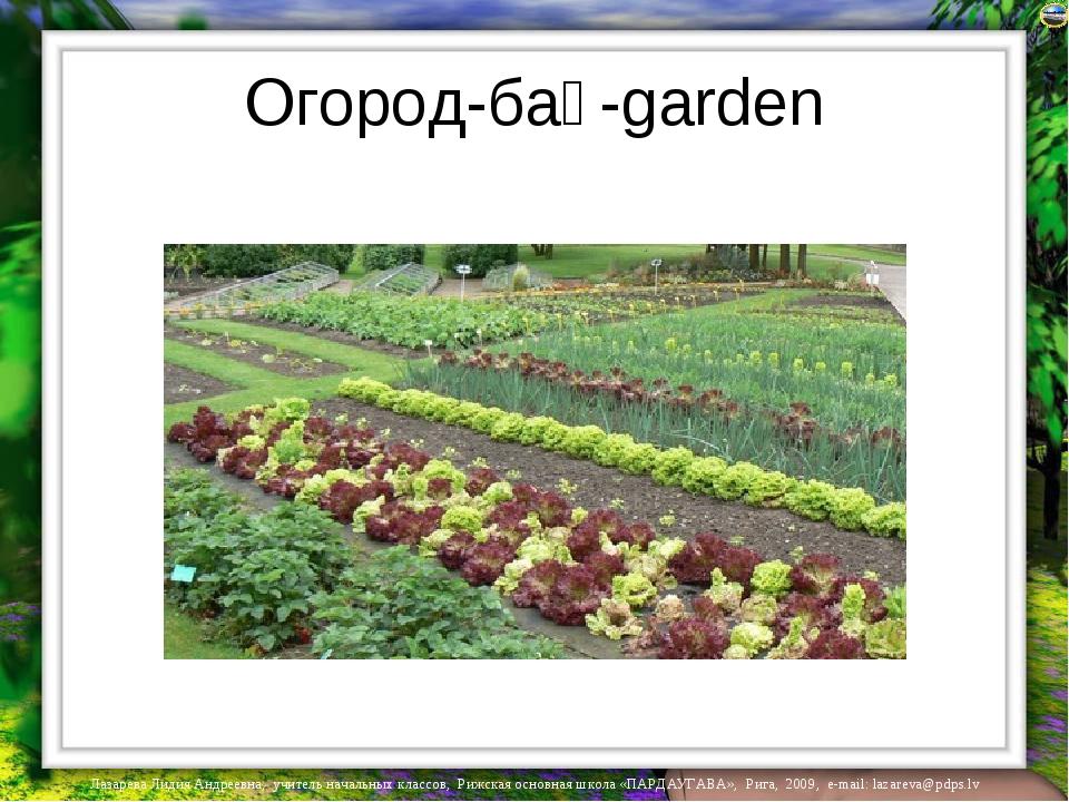 Огород-бақ-garden Лазарева Лидия Андреевна, учитель начальных классов, Рижска...
