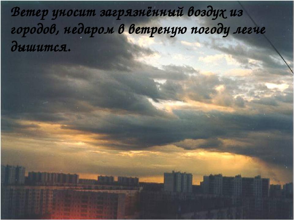 Ветер уносит загрязнённый воздух из городов, недаром в ветреную погоду легче...