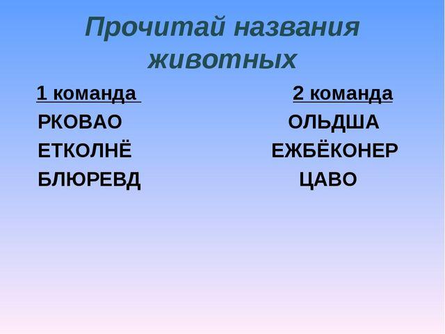 Прочитай названия животных 1 команда  2 команда РКОВАО ОЛЬДША ЕТКОЛНЁ...