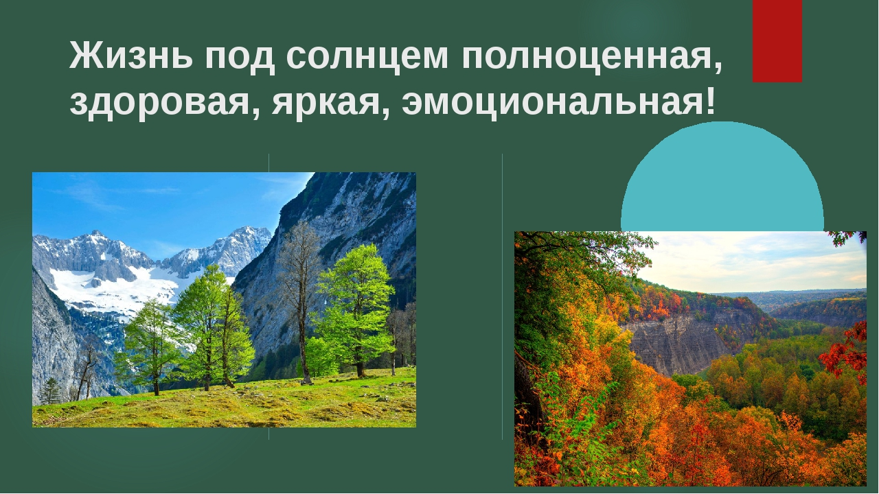 Жизнь под солнцем полноценная, здоровая, яркая, эмоциональная!