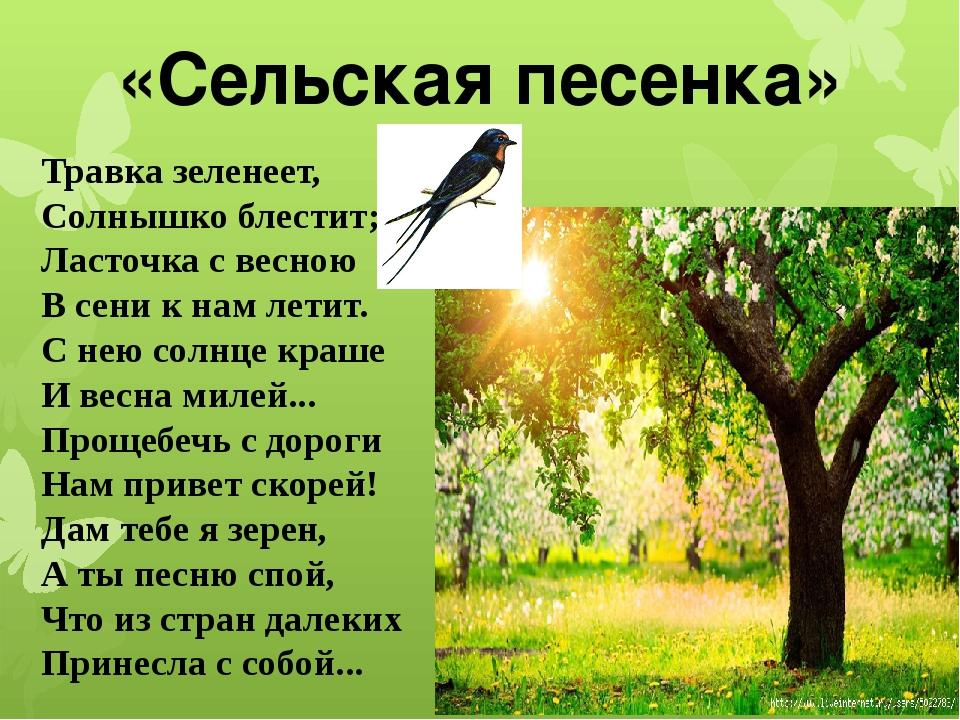 «Сельская песенка» Травка зеленеет, Солнышко блестит; Ласточка с весною В...