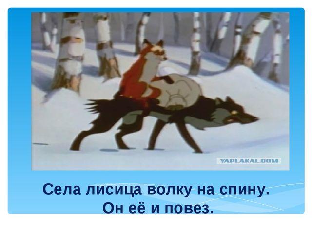 Села лисица волку на спину. Он её и повез.