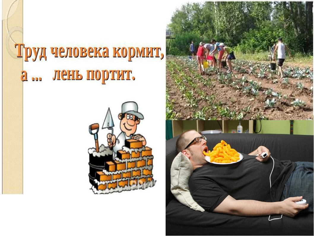 Труд кормит а лень портит картинки