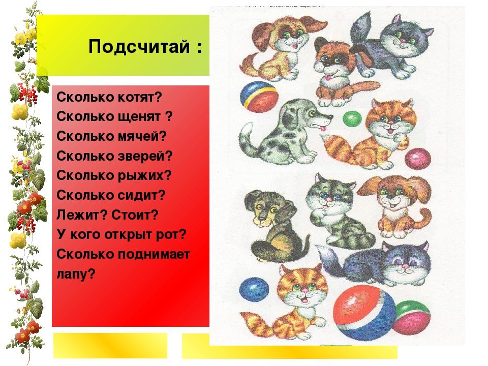 Подсчитай : ************************ Сколько котят? Сколько щенят ? Сколько м...