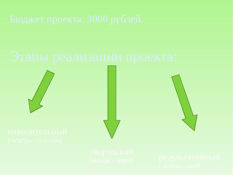 Бюджет проекта: 3000 рублей. Этапы реализации проекта: накопительный (октябрь...