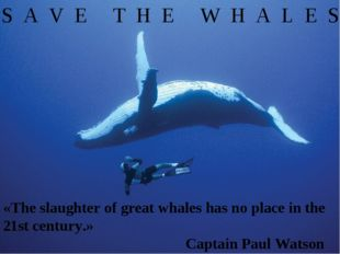 S A V E T H E W H A L E S «The slaughter of great whales has no place in the