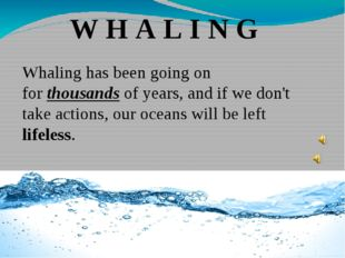 W H A L I N G Whaling has been going on for thousands of years, and if we don