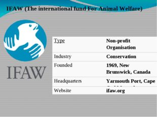 IFAW (The international fund For Animal Welfare) Type Non-profitOrganisation