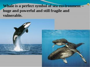 Whale is a perfect symbol of sea environment – huge and powerful and still fr