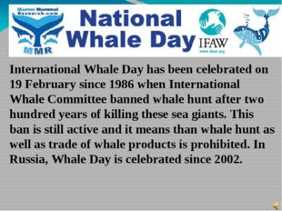 International Whale Day has been celebrated on 19 February since 1986 when In