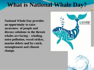 National Whale Day provides an opportunity to raise awareness of people and d