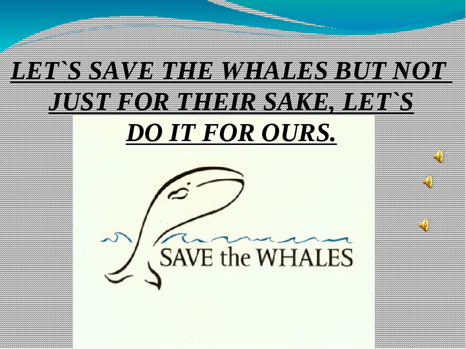 LET`S SAVE THE WHALES BUT NOT JUST FOR THEIR SAKE, LET`S DO IT FOR OURS.