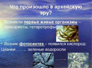 Что произошло в архейскую эру? Возникли первые живые организмы – прокариоты,