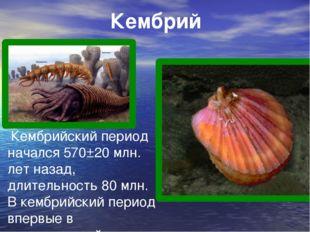 Кембрий Кембрийский период начался 570±20 млн. лет назад, длительность 80 млн