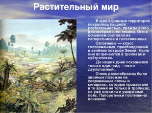В юре огромные территории покрылись пышной растительностью, прежде всего раз