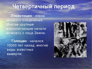 Четвертичный период Плейстоцен - эпоха великого оледенения. Многие крупные м