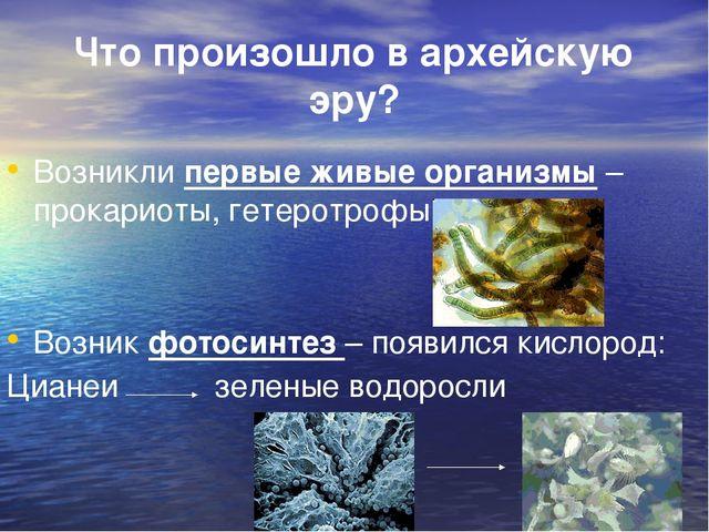 Что произошло в архейскую эру? Возникли первые живые организмы – прокариоты,...