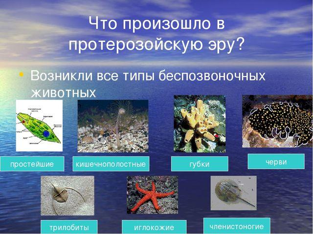 Что произошло в протерозойскую эру? Возникли все типы беспозвоночных животных...
