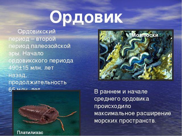 Ордовикский период – второй период палеозойской эры. Начало ордовикского пер...
