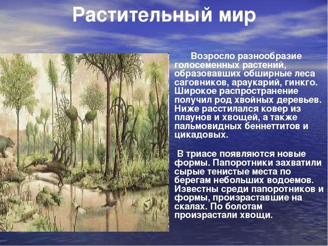 Возросло разнообразие голосеменных растений, образовавших обширные леса саго...