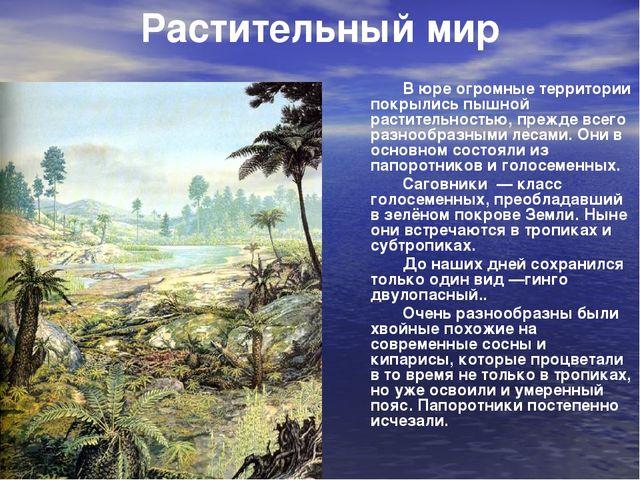 В юре огромные территории покрылись пышной растительностью, прежде всего раз...