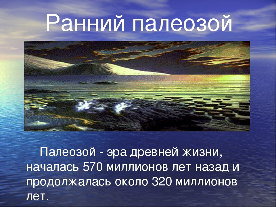 Ранний палеозой Палеозой - эра древней жизни, началась 570 миллионов лет наз...