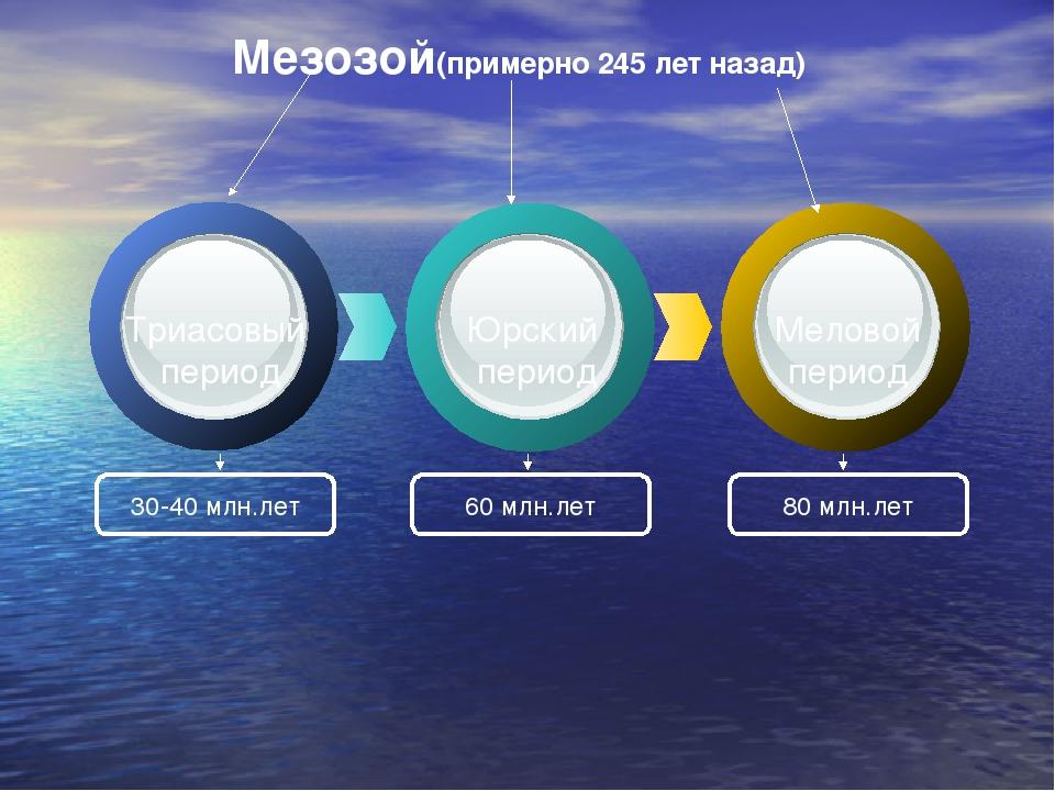 Мезозой(примерно 245 лет назад) 30-40 млн.лет 60 млн.лет 80 млн.лет Триасовы...