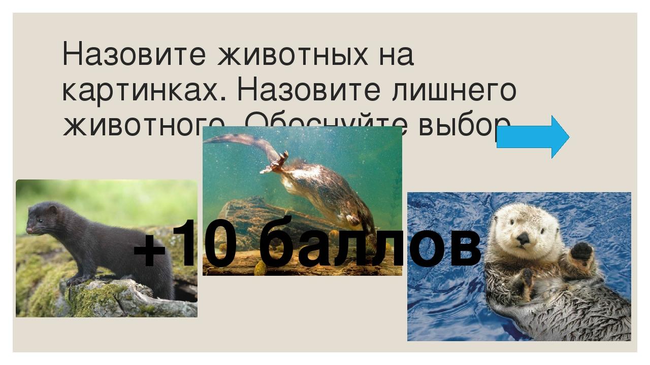 Назовите обитателей экосистемы озеро, которые являются индикаторами чистой во...