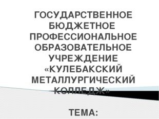 ГОСУДАРСТВЕННОЕ БЮДЖЕТНОЕ ПРОФЕССИОНАЛЬНОЕ ОБРАЗОВАТЕЛЬНОЕ УЧРЕЖДЕНИЕ «КУЛЕБА