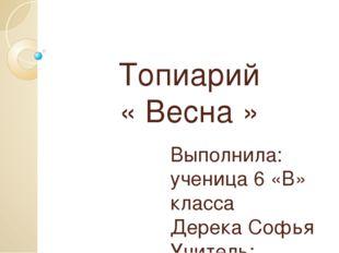 Топиарий « Весна » Выполнила: ученица 6 «В» класса Дерека Софья Учитель: Наум