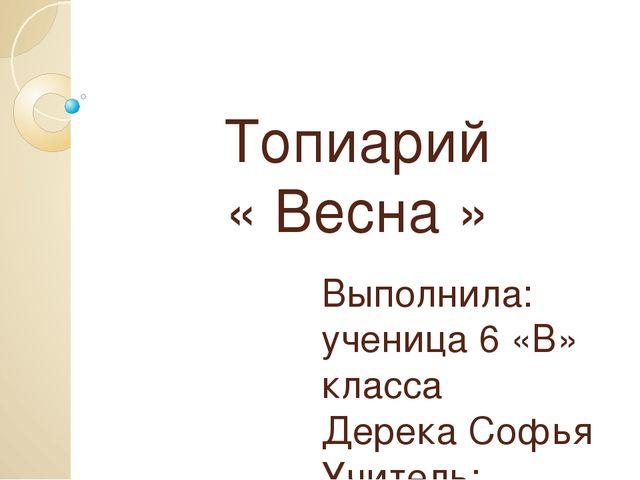 Топиарий « Весна » Выполнила: ученица 6 «В» класса Дерека Софья Учитель: Наум...