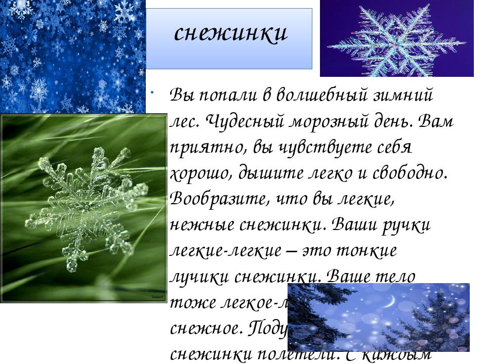 снежинки Вы попали в волшебный зимний лес. Чудесный морозный день. Вам приятн...