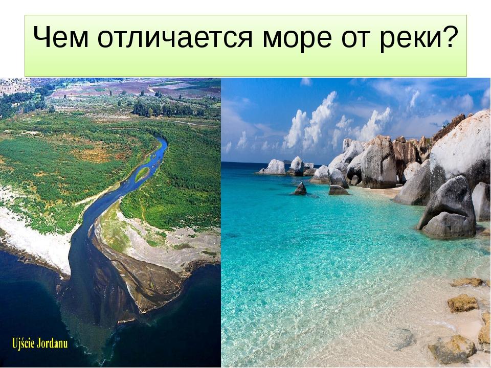Чем отличается море от реки?