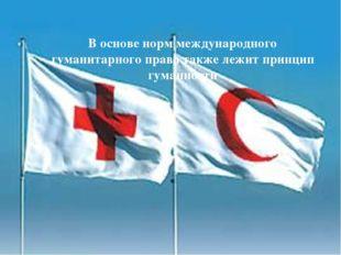 В основе норм международного гуманитарного права также лежит принцип гуманно
