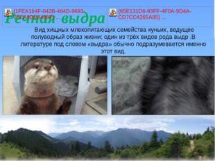 Видхищных млекопитающих семействакуньих, ведущее полуводный образ жизни;
