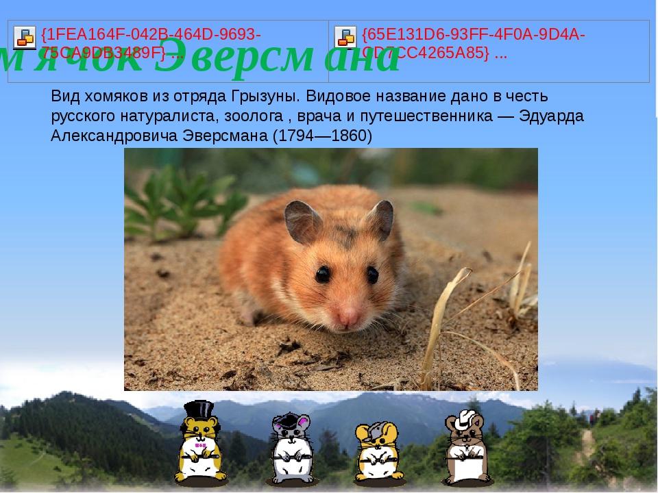 Видхомяковиз отрядаГрызуны. Видовое название дано в честь русскогонатура...