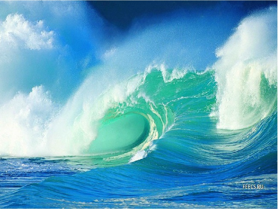 Океан гифы