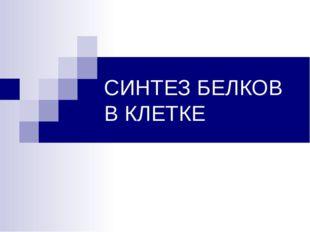 СИНТЕЗ БЕЛКОВ В КЛЕТКЕ