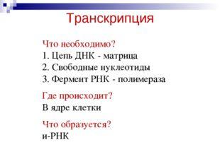 Транскрипция Что необходимо? 1. Цепь ДНК - матрица 2. Свободные нуклеотиды 3.