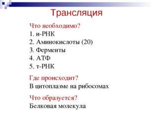 Трансляция Что необходимо? 1. и-РНК 2. Аминокислоты (20) 3. Ферменты 4. АТФ 5