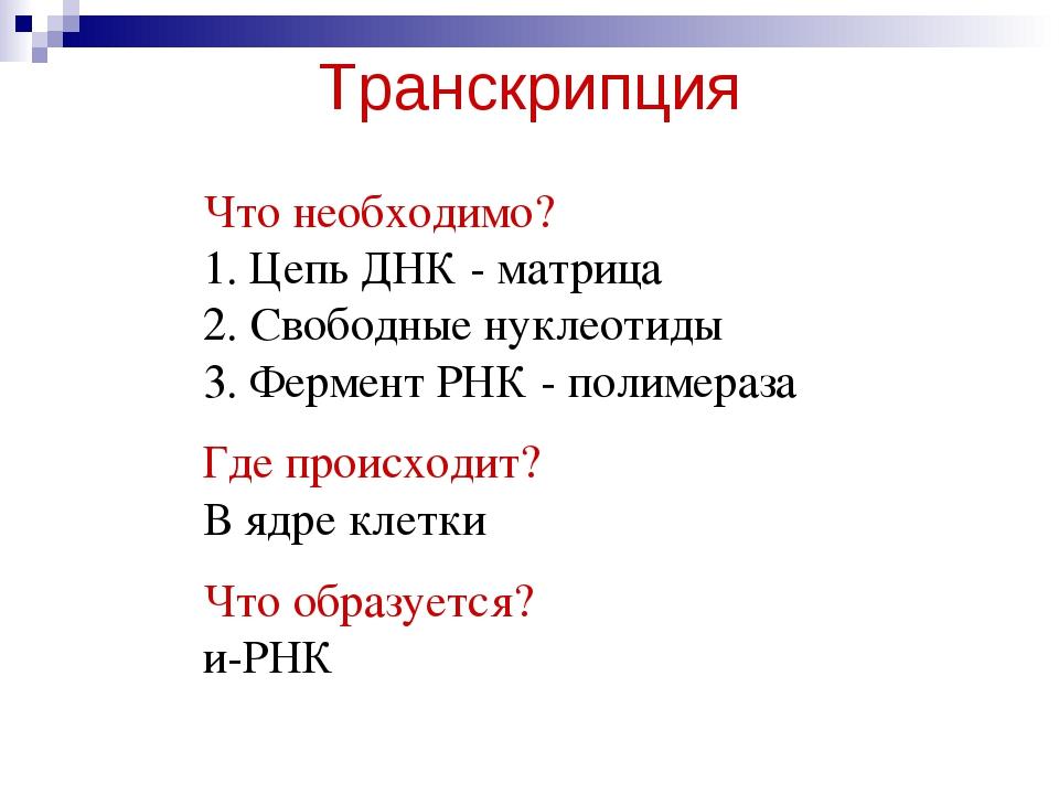 Транскрипция Что необходимо? 1. Цепь ДНК - матрица 2. Свободные нуклеотиды 3....