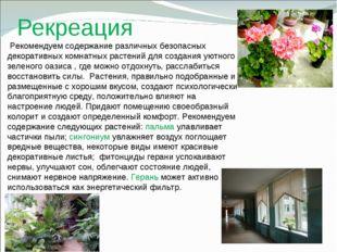 Рекреация Рекомендуем содержание различных безопасных декоративных комнатных